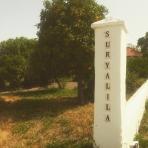 suryalila sign 01