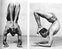 iyengar vrschikasana photo 1