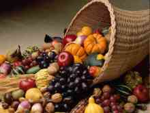 thanksgiving-harvest-1