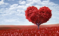 7000746-red-heart-tree