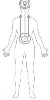 human outline 1