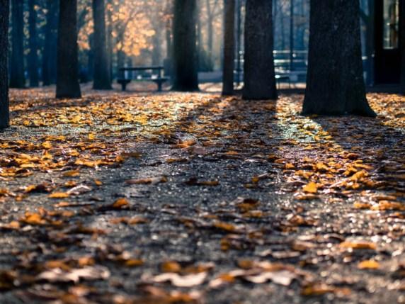autumn-self-care