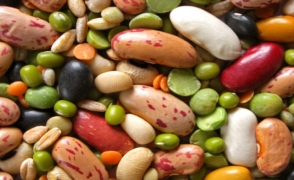 beans-copper