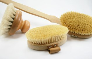 Dry-Body-Brushes