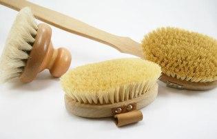 Dry-Body-Brushes